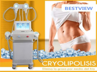 Cryolipolysis Body Slimming Machine has been exported to Spain